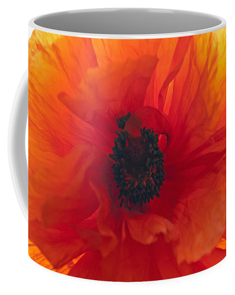 Flower Coffee Mug featuring the photograph Glowing Poppy by Tikvah's Hope