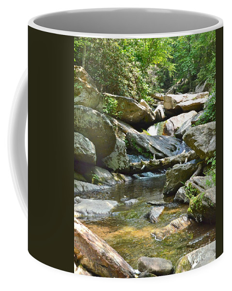 Tennessee Coffee Mug featuring the photograph Goforth Falls by Carol Bradley