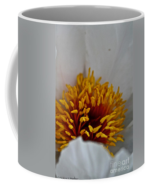 Plant Coffee Mug featuring the photograph Gold Stamen by Susan Herber