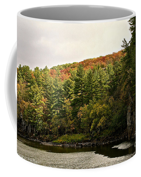 Landscape Coffee Mug featuring the photograph Gold Trimmed Trees by Susan Herber