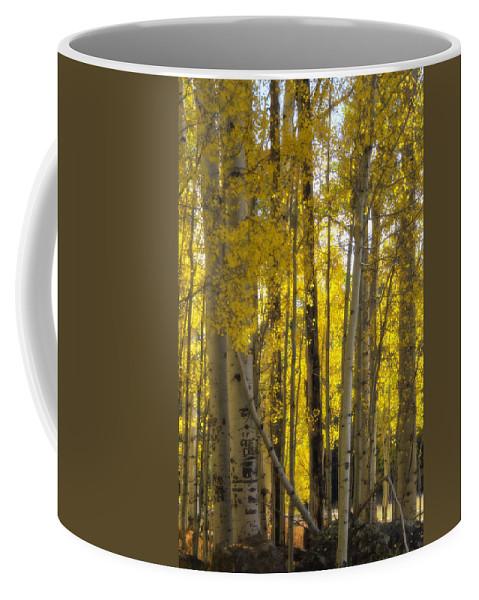 Fall Coffee Mug featuring the photograph Golden Autumn by Saija Lehtonen
