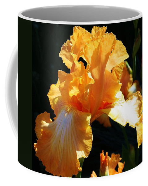 Flora Coffee Mug featuring the photograph Golden King by Bruce Bley