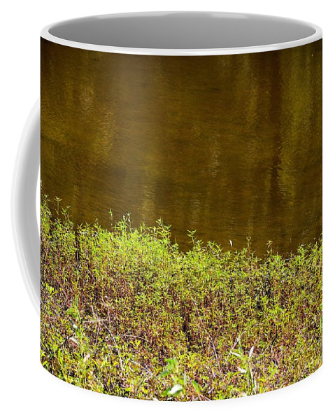 Golden Water's Edge Coffee Mug featuring the photograph Golden Water's Edge by Maria Urso