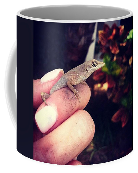 Florida Coffee Mug featuring the photograph Good Bye Little Coffee Mate. by Katie Cupcakes