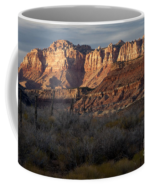 Sandra Bronstein Coffee Mug featuring the photograph Grafton Road View by Sandra Bronstein