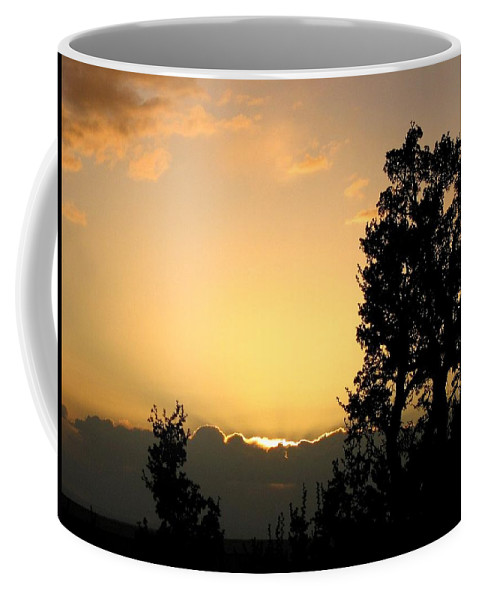 Grand Canyon Coffee Mug featuring the photograph Grand Canyon 34 by Will Borden