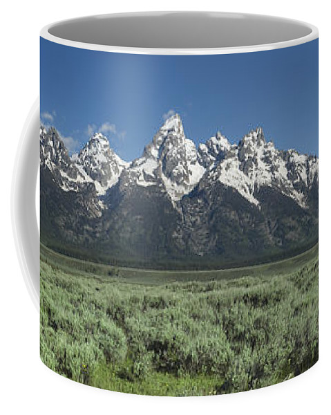 Bronstein Coffee Mug featuring the photograph Grand Teton Spring by Sandra Bronstein