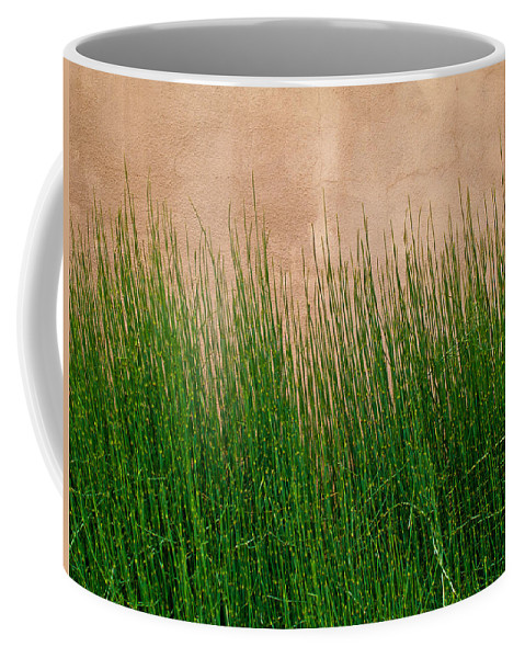 Grass Coffee Mug featuring the photograph Grass And Stucco by David Pantuso
