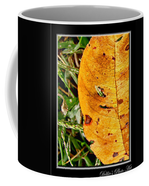 Nature Coffee Mug featuring the photograph Grass Grows Through The Leaf Window by Debbie Portwood