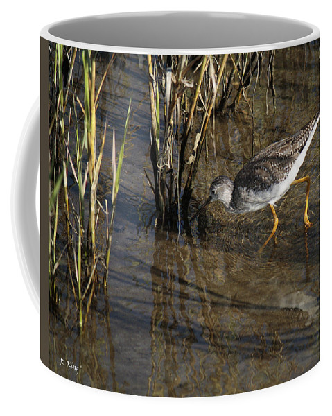Roena King Coffee Mug featuring the photograph Greater Yellowlegs At Spi by Roena King