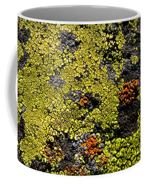 Abstract Coffee Mug featuring the photograph Green Algea by Sean Wray