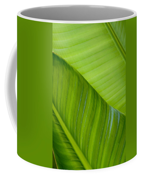 Abstract Coffee Mug featuring the photograph Green Leaf Patterns by Joe Carini - Printscapes