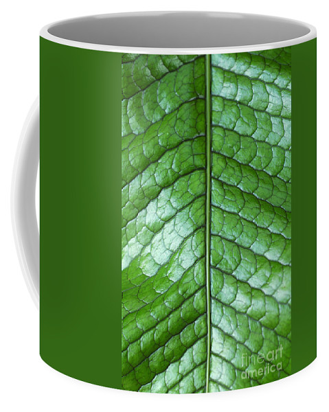 Green Coffee Mug featuring the photograph Green Scaly Leaf Pattern by Mike Nellums