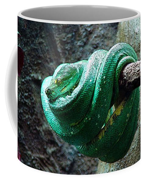 Reptile Coffee Mug featuring the digital art Green Snake by CJ Clark