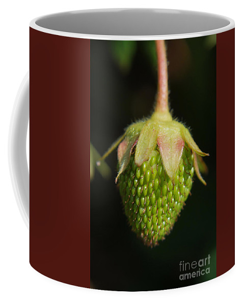 Yhun Suarez Coffee Mug featuring the photograph Green Strawberry by Yhun Suarez