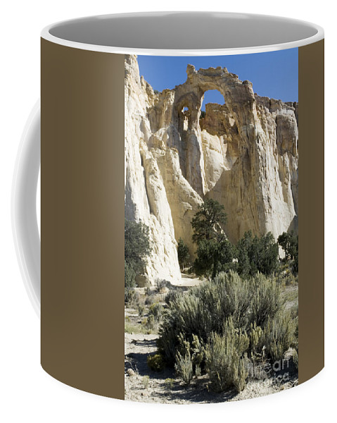 Bronstein Coffee Mug featuring the photograph Grosvenor by Sandra Bronstein