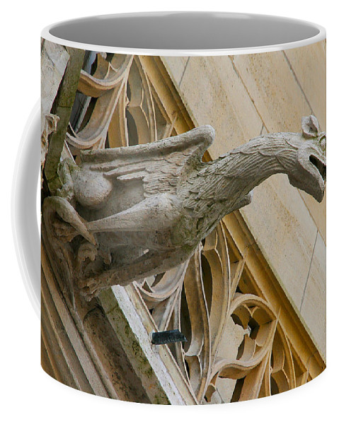 Dragon Coffee Mug featuring the photograph Guardian Dragon by Diana Haronis