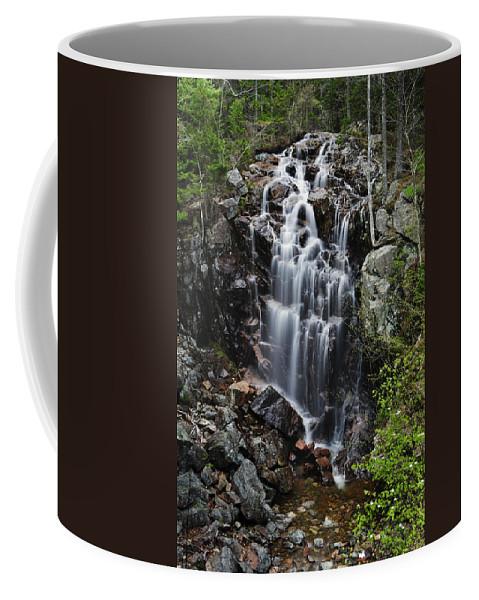 Hadlock Falls Coffee Mug featuring the photograph Hadlock Falls Acadia by Rick Berk