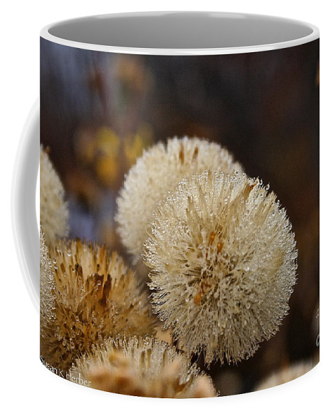 Flower Coffee Mug featuring the photograph Hairy Aster by Susan Herber