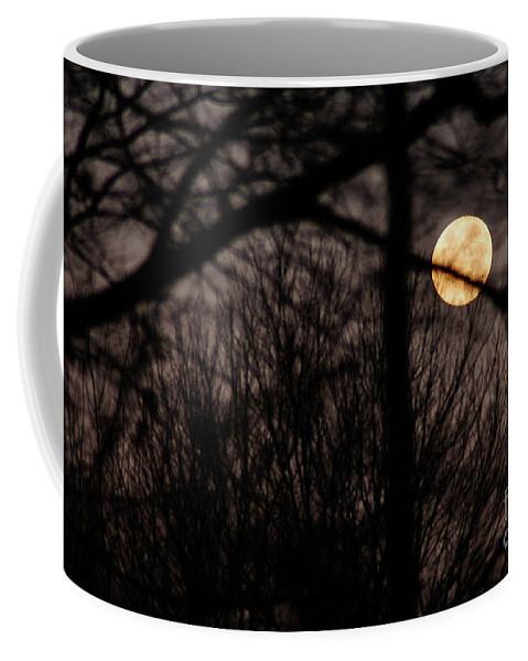 Clay Coffee Mug featuring the photograph Haunted Forest by Clayton Bruster