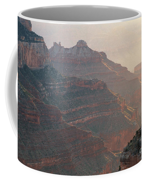 Bronstein Coffee Mug featuring the photograph Haze And Last Light by Sandra Bronstein