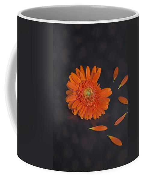 Gerbera Coffee Mug featuring the photograph He Loves Me... by Joana Kruse