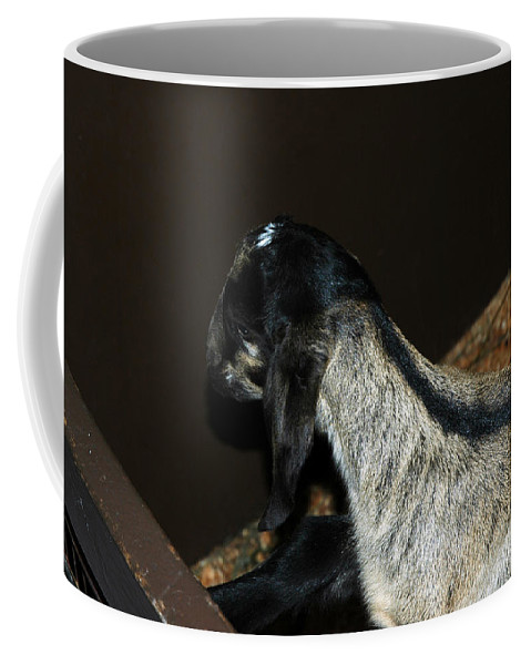 Usa Coffee Mug featuring the photograph Head Agaist Wall by LeeAnn McLaneGoetz McLaneGoetzStudioLLCcom