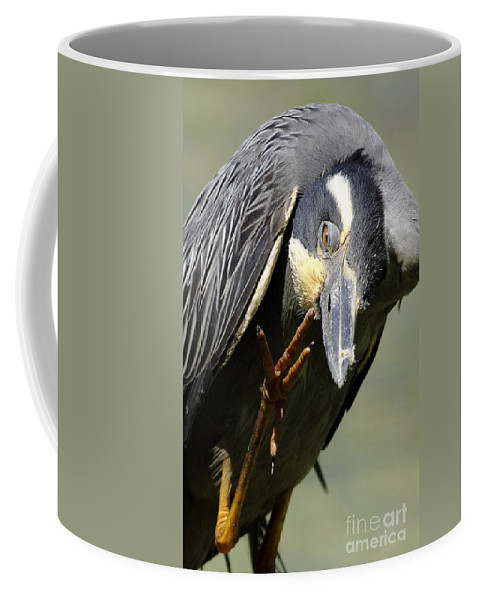 Animal Coffee Mug featuring the photograph Head Screwed On Wrong by Robert Frederick