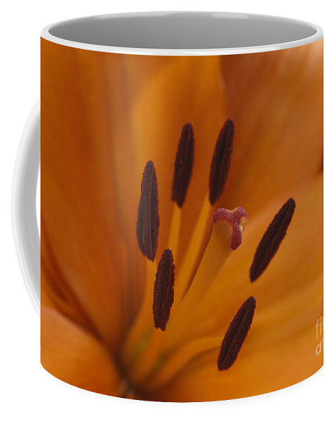 Bronstein Coffee Mug featuring the photograph Heart Of The Lily by Sandra Bronstein