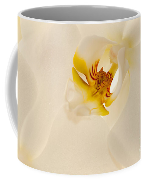 Bronstein Coffee Mug featuring the photograph Heart Of The Orchid by Sandra Bronstein