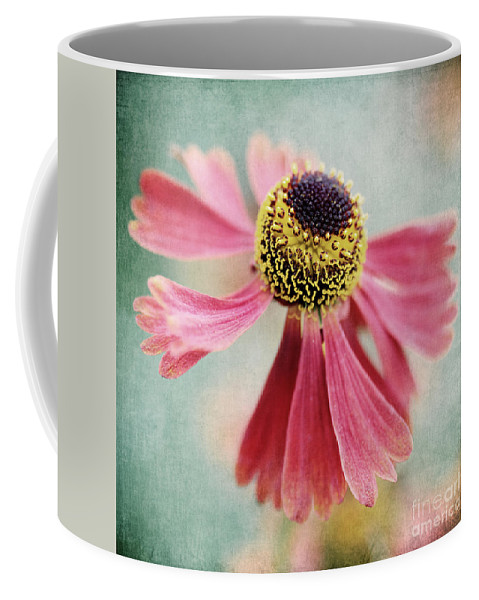 Heleniumm Coffee Mug featuring the photograph Helenium Flower 1 by Neil Overy