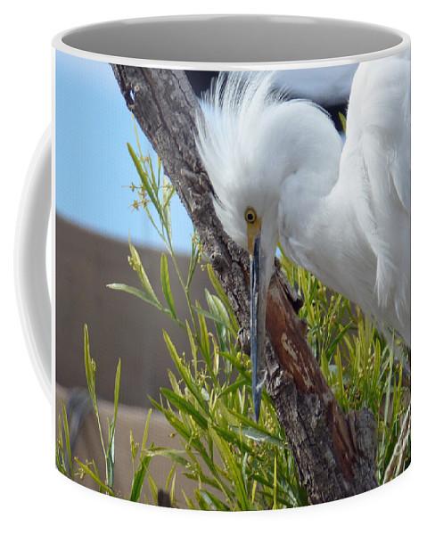 Heron Coffee Mug featuring the photograph Heron by Methune Hively