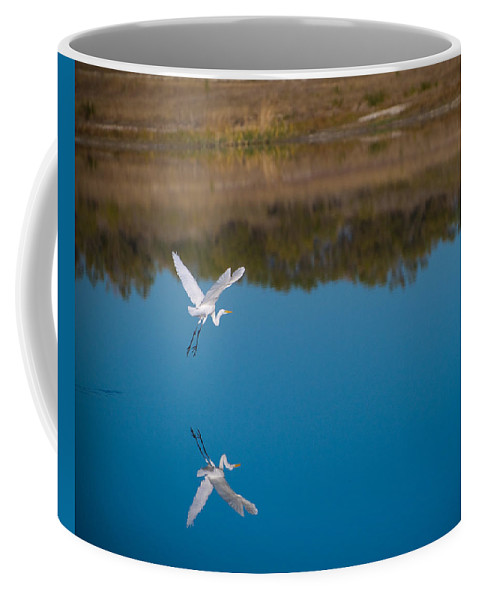 Fall Color Coffee Mug featuring the photograph Herron 5 by Sean Wray