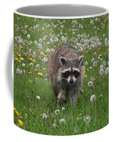 Alyce Taylor Coffee Mug featuring the photograph Hey What You Got There by Alyce Taylor