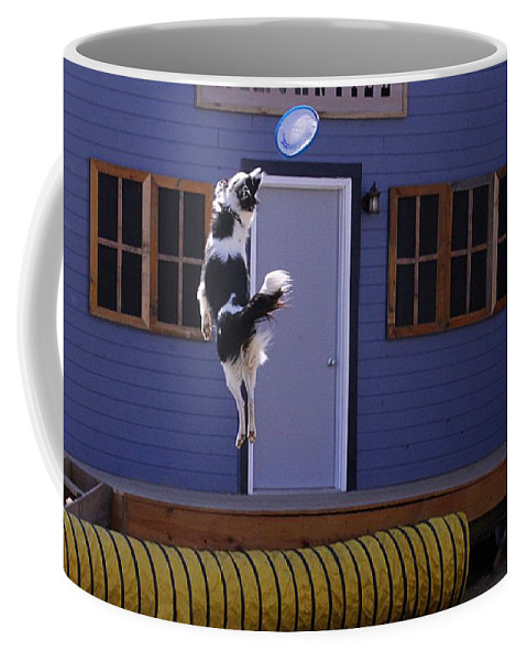 Dog Show And Tricks Coffee Mug featuring the photograph High Flying Catch by Elizabeth Winter