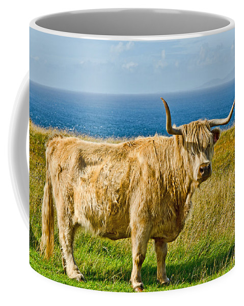Highland Cow Coffee Mug featuring the photograph Highland Cow by Chris Thaxter