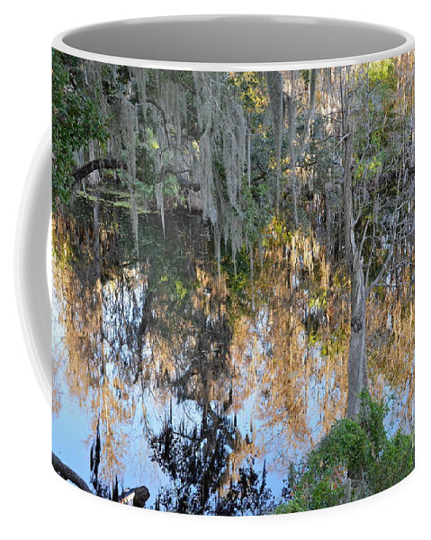 River Coffee Mug featuring the photograph Hillsborough River Reflections by Carol Bradley