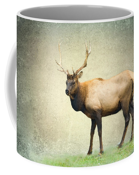 Elk Coffee Mug featuring the photograph His Majesty by Betty LaRue