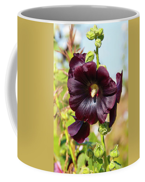 Flowers Coffee Mug featuring the photograph Hollyhock 7193 by Guy Whiteley