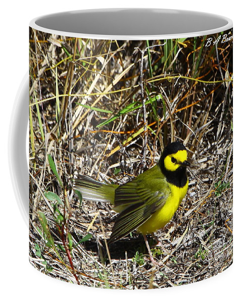 Hooded Warbler Coffee Mug featuring the photograph Hooded Warbler by Barbara Bowen