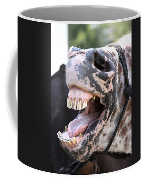 Horses Coffee Mug featuring the photograph Horse Humor by Travis Truelove