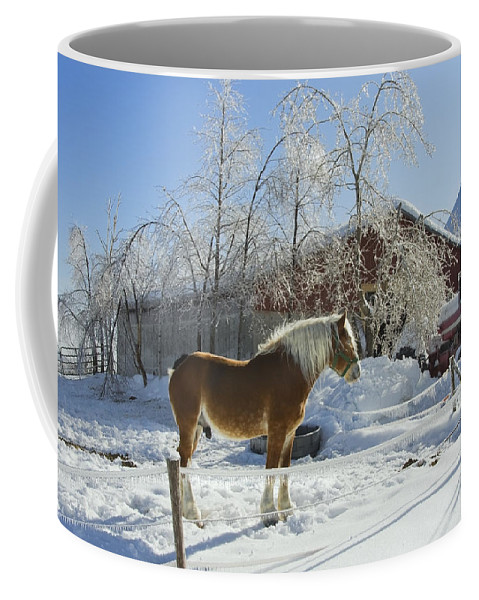 Horse Coffee Mug featuring the photograph Horse On Maine Farm After Snow And Ice Storm by Keith Webber Jr