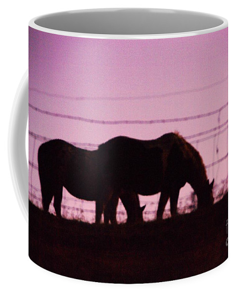 Horses Coffee Mug featuring the photograph Horses Grazing At Dawn by Jeff Swan