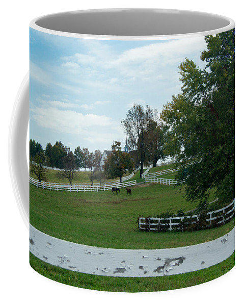 Farm Coffee Mug featuring the photograph Horses On The Farm 1 by Douglas Barnett