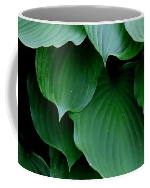 Hosta Coffee Mug featuring the photograph Hosta Green by Betty Northcutt