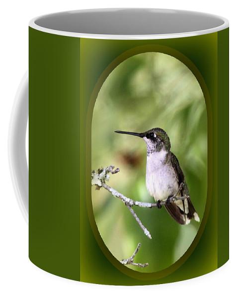 Hummingbird Coffee Mug featuring the photograph Hummingbird - Gold And Green by Travis Truelove