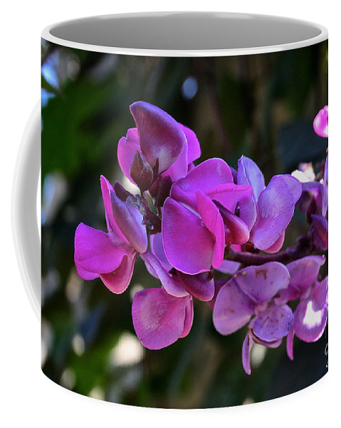 Outdoors Coffee Mug featuring the photograph Hyacinth Bean by Susan Herber