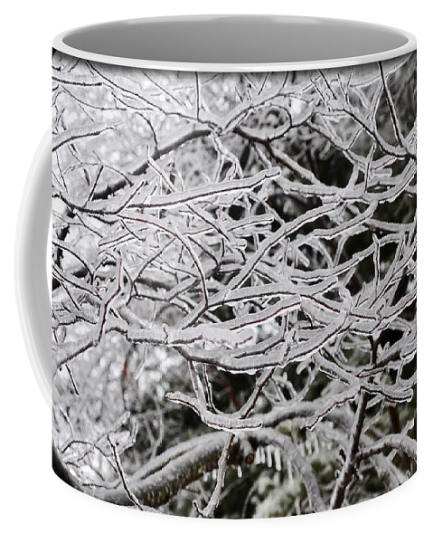 Tree Coffee Mug featuring the photograph Icy Dreams by Brittany Horton