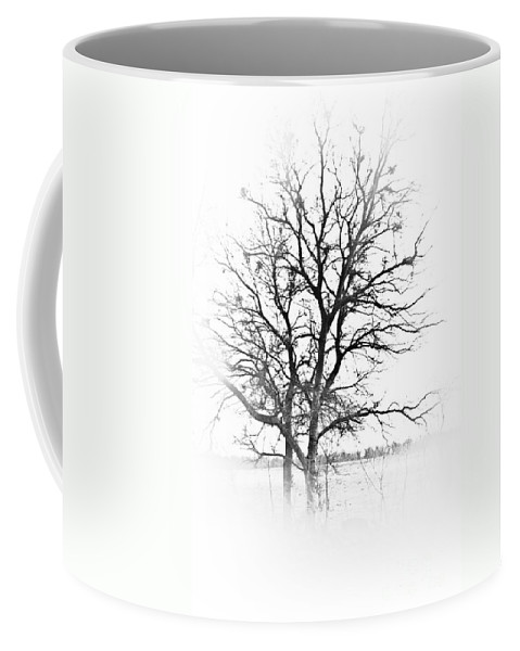 Tree Coffee Mug featuring the photograph In Black And White by Kim Henderson