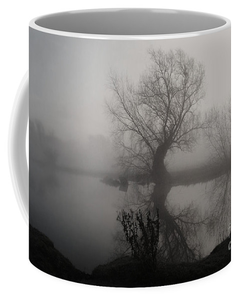 Yhun Suarez Coffee Mug featuring the photograph In The Mist by Yhun Suarez
